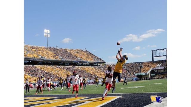 Dates for Gold Rush, Stripe the Stadium and True Blue games announced